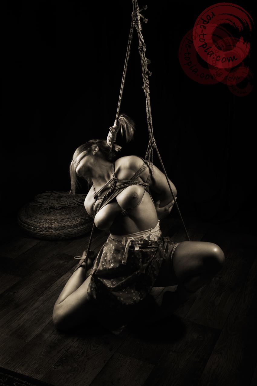Bondage With Rope 13
