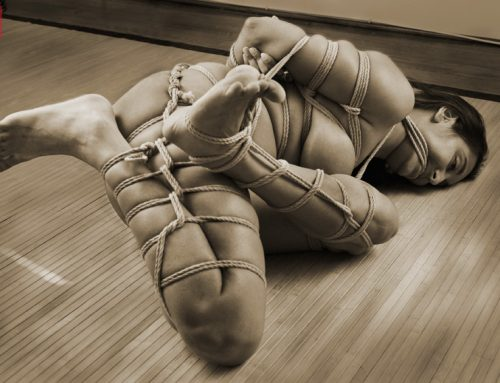 Knave bound, shibari in Baltimore