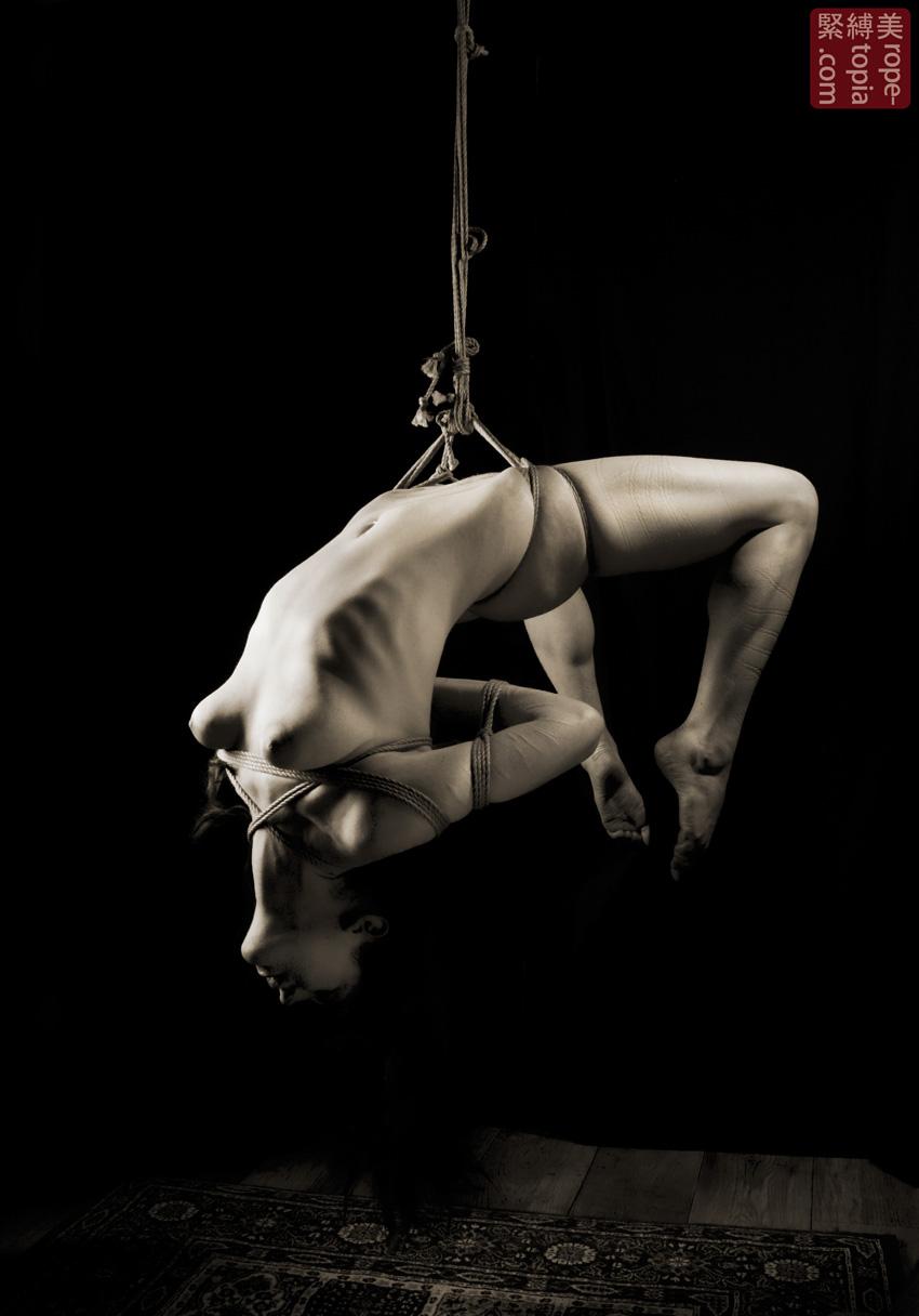 Japanese bondage harness-2246